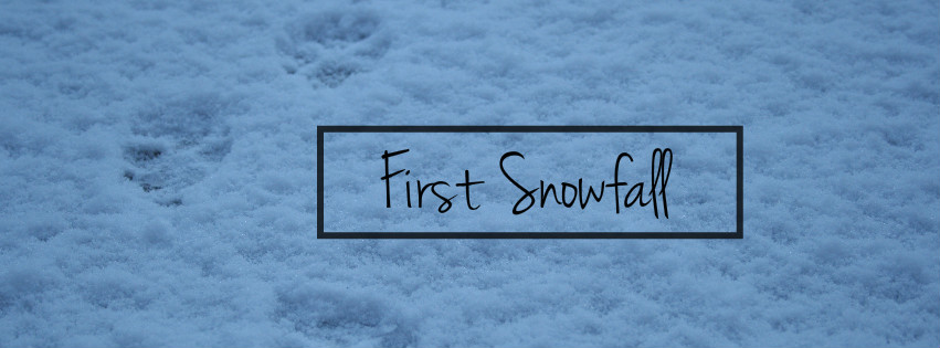 FirstSnowCoverPhoto